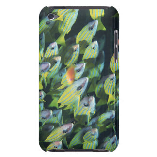 School of Fish 7 iPod Touch Cover