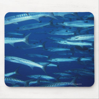 School of Fish 9 Mouse Pad