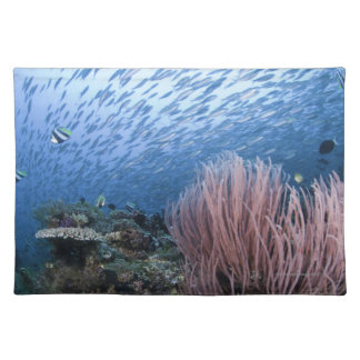 School of fish above reef placemat
