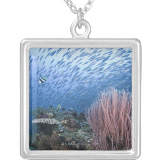 School of fish above reef silver plated necklace