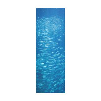 School Of Fish Gallery Wrap Canvas