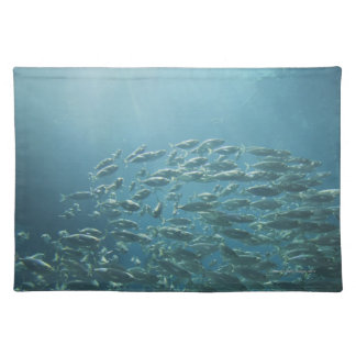 School of fish, Nassau, Bahamas Placemat
