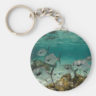 School of Permit Fish Key Ring