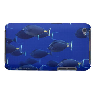 School of smooth-headed unicornfish barely there iPod cover