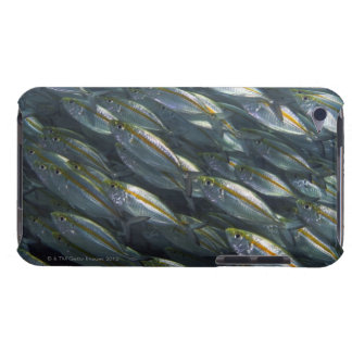 School of Yellow jacks (Carangoides) Barely There iPod Cases