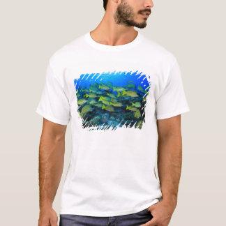 Schooling Bluestripped Snappers Lutjanus T-Shirt