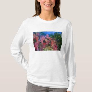 schooling Fairy Basslets  (Pseudanthias 4 T-Shirt
