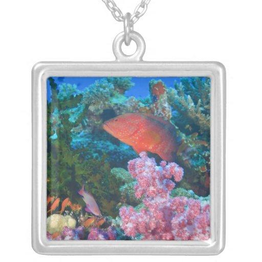 schooling Fairy Basslets  (Pseudanthias Custom Necklace