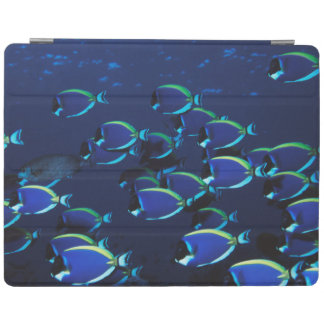 Schooling Powder Blue Surgeonfish iPad Cover