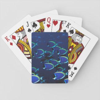 Schooling Powder Blue Surgeonfish Poker Deck