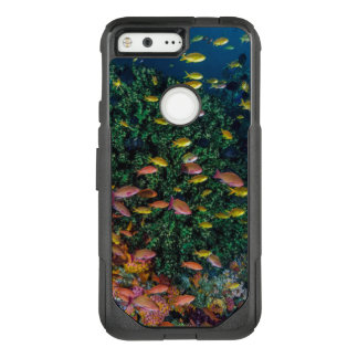 Schools of Fish Swim in Reef OtterBox Commuter Google Pixel Case