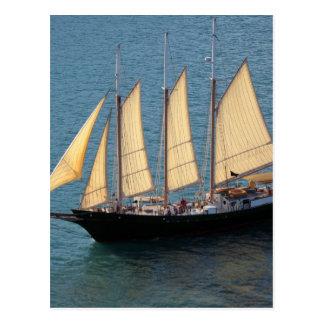 Schooner Boat Postcard