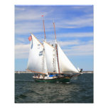 Schooner Setting Sail Photo