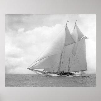 Schooner Yacht America Poster