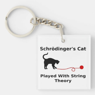 Schrödinger's Cat Played With String Theory Double-Sided Square Acrylic Keychain