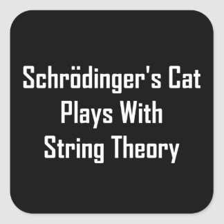 Schrodinger s Cat Plays With String Theory Sticker