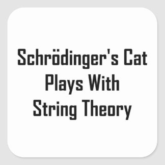 Schrodinger s Cat Plays With String Theory Square Sticker