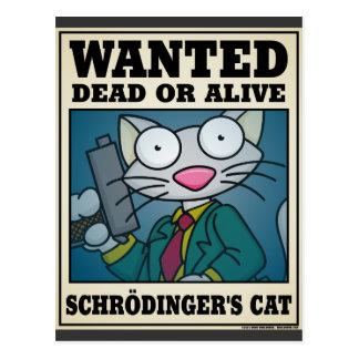 Schrödinger s Cat Postcard