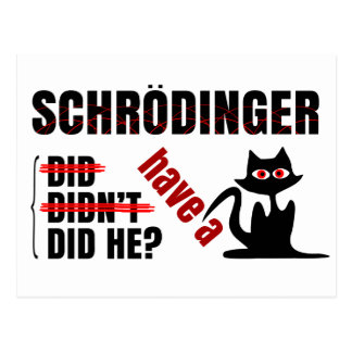 Schrodinger s Dillema Post Cards