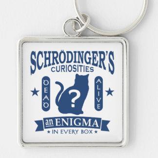 Schrodinger's Cat Dead or Alive Quantum Mechanics Silver-Colored Square Key Ring