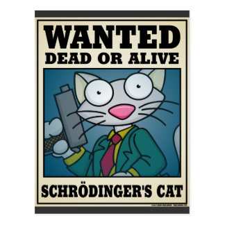 Schrödinger's Cat Postcard