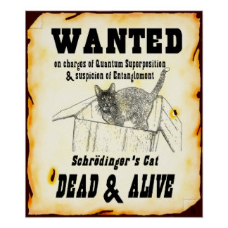 "Schrodinger's Cat ""Wanted"" Poster"