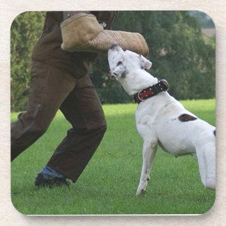 Schutzhund American Bulldog Coasters
