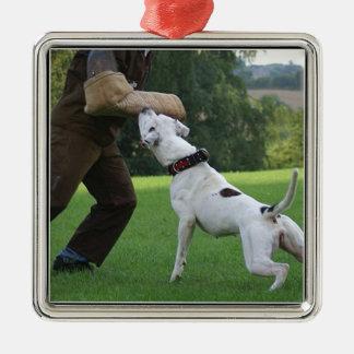 Schutzhund American Bulldog Silver-Colored Square Decoration