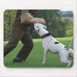 Schutzhund American Bulldog Mousepads