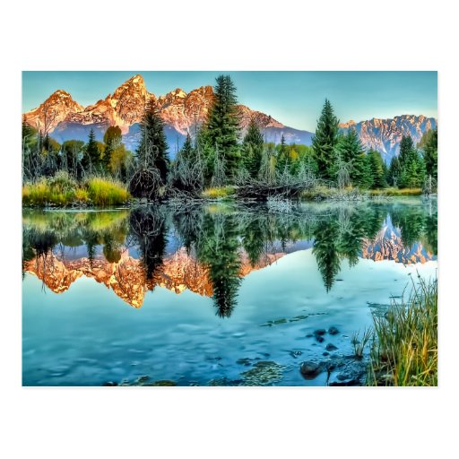Schwabacher's Landing and Beaver Pond Postcards