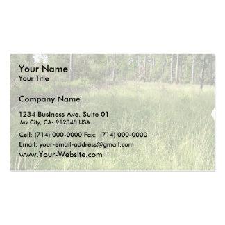 Schwalbea americana habitat pack of standard business cards