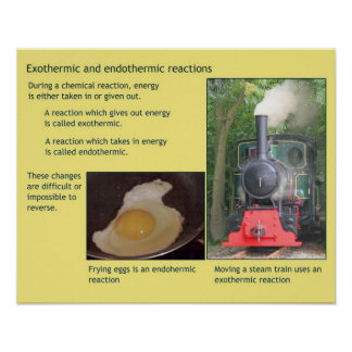 Science, Heat, Exothermic and endothermic Poster