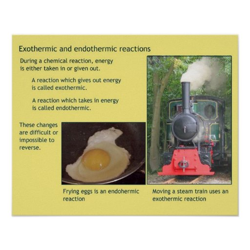 Science, Heat, Exothermic and endothermic Print