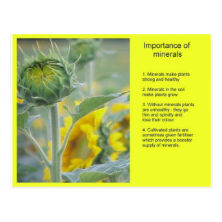 Science, Importance of minerals Postcard