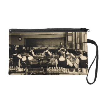 Science Lesson at the London Grammar School for Gi Wristlet Clutches