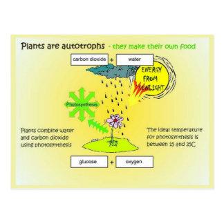 Science,  Plants autographs Postcard