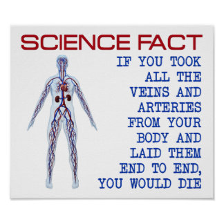 Science Veins Funny Poster