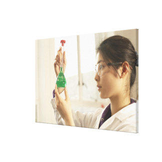 Scientist examining liquid in beaker stretched canvas print
