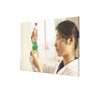 Scientist examining liquid in beaker canvas prints