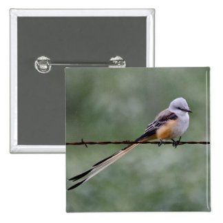 Scissor-tailed Flycatcher perched on barbed wire 15 Cm Square Badge