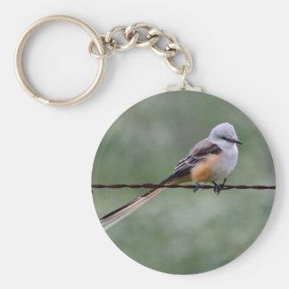 Scissor-tailed Flycatcher perched on barbed wire Basic Round Button Key Ring
