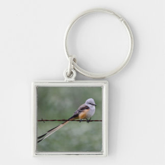 Scissor-tailed Flycatcher perched on barbed wire Silver-Colored Square Key Ring