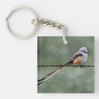 Scissor-tailed Flycatcher perched on barbed wire Double-Sided Square Acrylic Key Ring