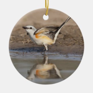 Scissor-tailed Flycatcher reflected in pond Christmas Ornament
