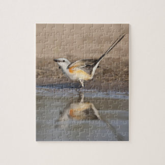Scissor-tailed Flycatcher reflected in pond Jigsaw Puzzle