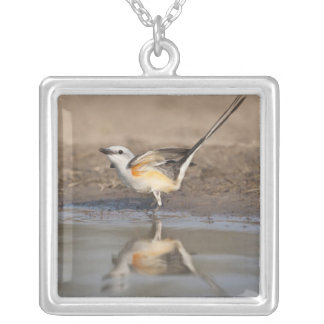 Scissor-tailed Flycatcher reflected in pond Silver Plated Necklace