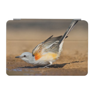 Scissor-Tailed Flycatcher (Tyrannus Forficatus) iPad Mini Cover