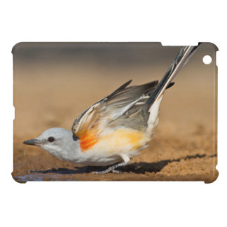 Scissor-Tailed Flycatcher (Tyrannus Forficatus) iPad Mini Covers