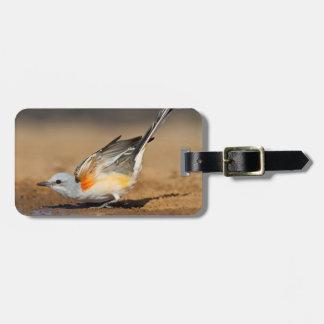 Scissor-Tailed Flycatcher (Tyrannus Forficatus) Luggage Tag