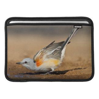 Scissor-Tailed Flycatcher (Tyrannus Forficatus) Sleeve For MacBook Air